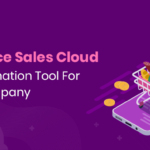 Salesforce Sales Cloud: Best Automation Tool For FMCG Company